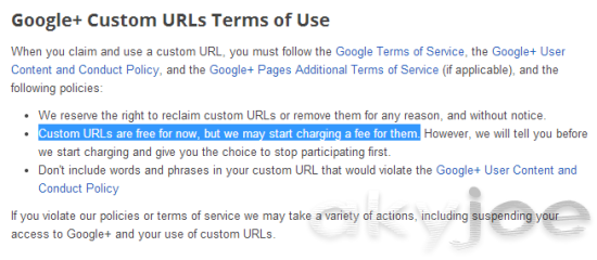 Google Plus Short Profile URL Terms